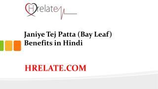 Tej Patta (Bay Leaf) Benefits: Janiye Isse Hone Wale Fayde