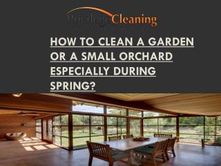 How to Clean a Garden or a Small Orchard Especially During Spring
