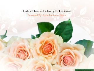 Avon Lucknow Florist