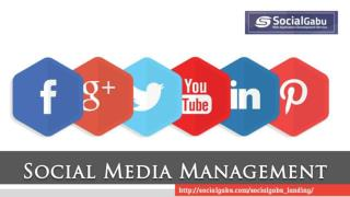 Social Media Management Solution
