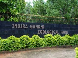 Indira Gandhi Zoological Park at Visakhapatnam � Timings