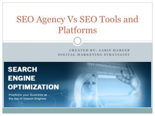 SEO Agency Vs SEO Tools and Platforms
