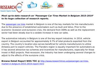 Passenger Car Tires Market in Belgium 2015-2019