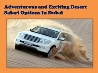 Exciting  Desert Safari in Dubai