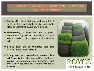 Get That Perfect Soil for Your Plants from Soil Suppliers Woking
