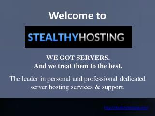 Budget Dedicated Servers