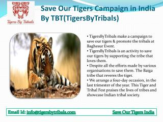 Save Our Tigers Campaign in India