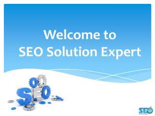 SEO Solution Expert