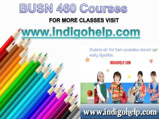 BUSN 460 Course Tutorial / indigohelp