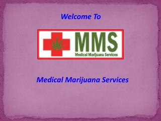 Licensed Medical Marijuana Health in Canada