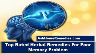 Top Rated Herbal Remedies For Poor Memory Problem