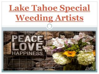 Lake Tahoe Special Weeding Artists