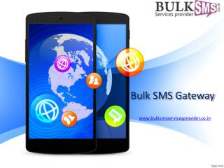 Bulk SMS Gateway-The Vital tool for Marketing and Campaigning Tool