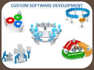 vertexplus-Custom Development Software