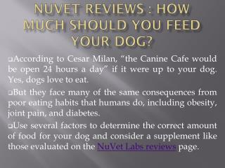 NuVet Reviews : How Much Should You Feed Your Dog?