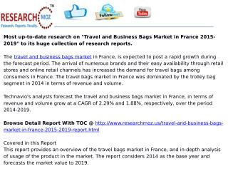 Travel and Business Bags Market in France 2015-2019