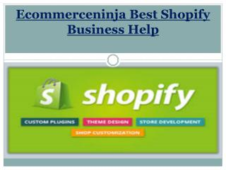 Ecommerceninja Best Shopify Business Help