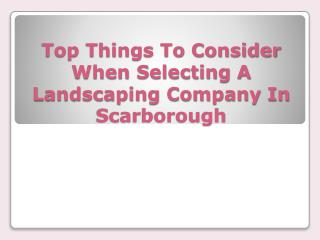 Top Things To Consider When Selecting A Landscaping Company In Scarborough