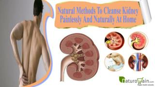 Natural Methods To Cleanse Kidney Painlessly And Naturally At Home