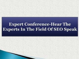 Expert Conference-Hear The Experts In The Field Of SEO Speak