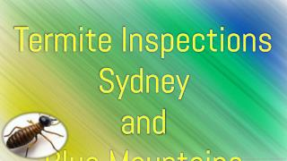Termite Inspections Sydney  and  Blue Mountains