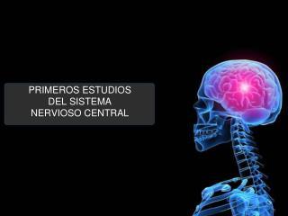 PRIMEROS ESTUDIOS DEL SISTEMA NERVIOSO CENTRAL