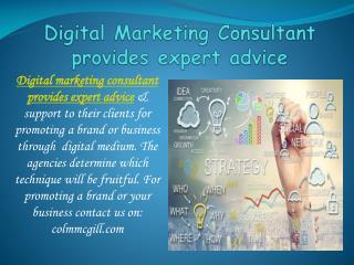 Digital Marketing Consultant provides expert advice