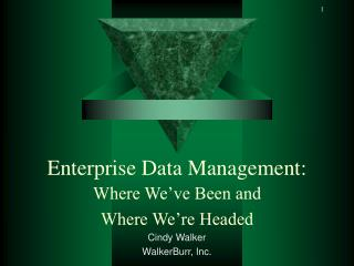 Enterprise Data Management: