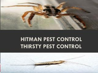 Hitman Pest Control thirsty pest control