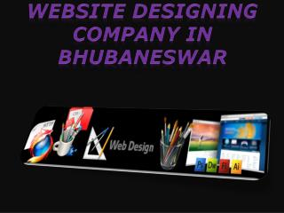 website designing company in Bhubaneswar