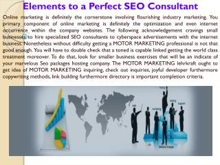 Elements to a Perfect SEO Consultant