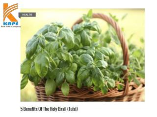 5 benefits of the holy basil (tulsi)