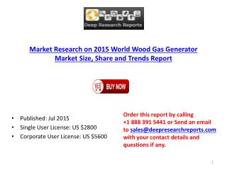 Global Wood Gas Generator Market Size, Share and Trends Report 2015