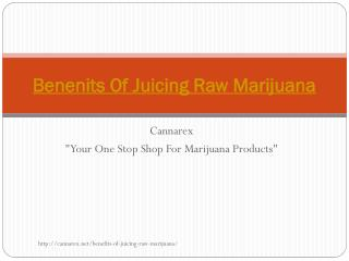 Benefits Of Juicing Raw Marijuana
