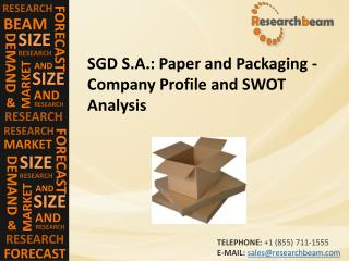 SGD S.A.: Paper and Packaging - Company Profile and SWOT Analysis
