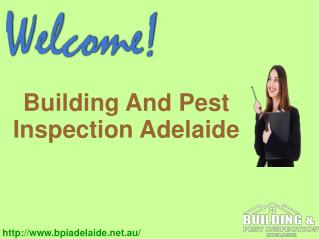 Building and Pest Inspection Service Adelaide