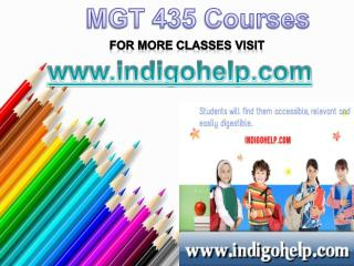 MGT 435 Courses/Indigohelp