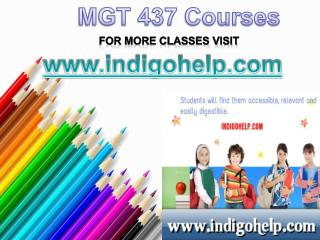 MGT 437 Courses/Indigohelp