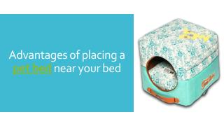 Advantages of placing a pet bed near your bed