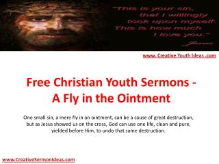 Free Christian Youth Sermons - A Fly in the Ointment