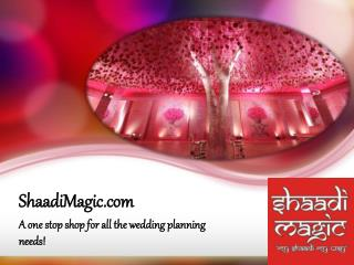 Big Indian Wedding: Website For Wedding Plans: Shaadi Magic