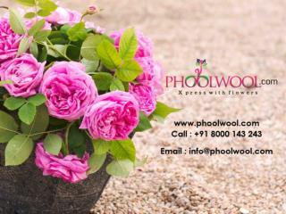 Personalized Gifts, Send Flowers and Cakes  - Phoolwool.com