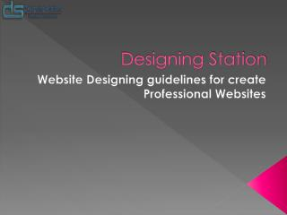 Website Designing guidelines for create Professional Websites