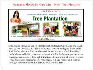 Mamtamai Shri Radhe Guru Maa - Event - Tree Plantatio