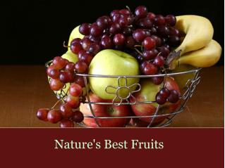 Nature's Best Fruits