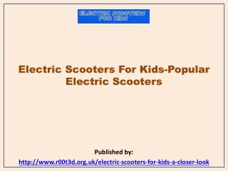 Popular Electric Scooters