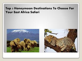 Top 3 Honeymoon Destinations To Choose For Your East Africa Safari