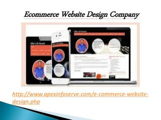 Ecommerce Website Design Company of USA