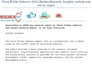 China E-bike Industry 2015: Market Research, Insights, outlook and survey report
