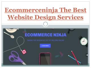Ecommerceninja The Best Website Design Services